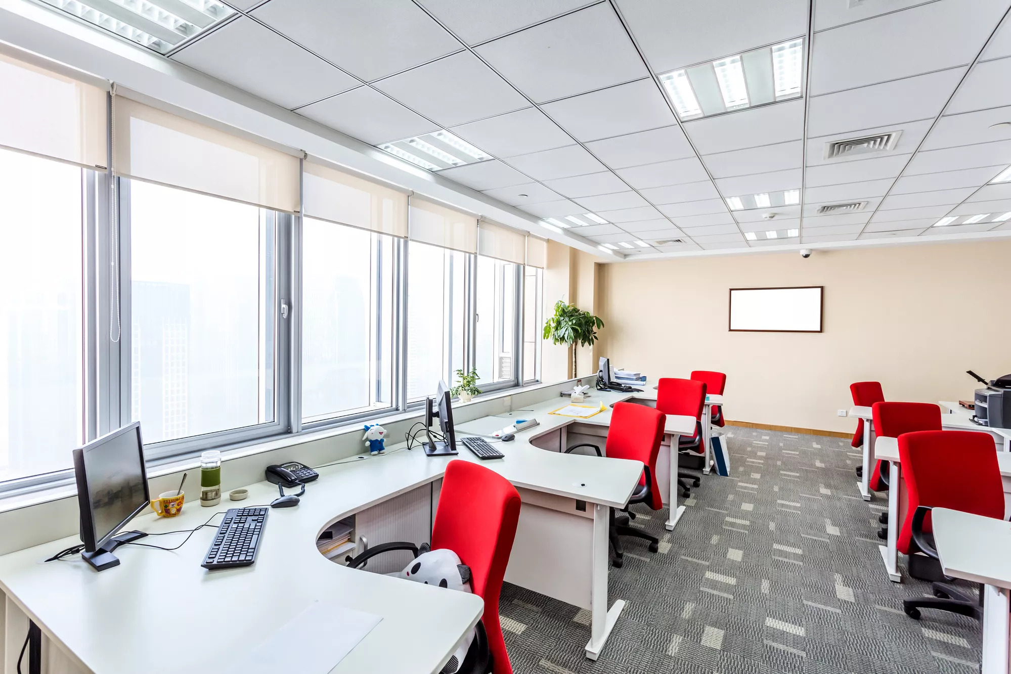 Completed Office Refurbishment
